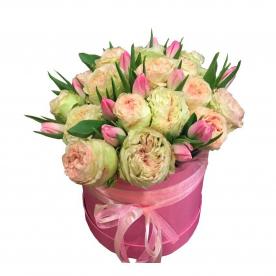 Пионы и тюльпаны
